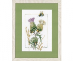 Thistle bees